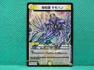 DM・H09 緑知銀サモハン RP01 1枚 【条件付送料無料】