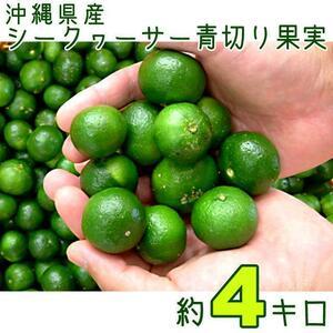 【送料込】沖縄産青切りシークヮーサー約4キロ┃完全無農薬栽培のシークァーサーです┃夏季収穫
