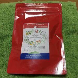 紅茶(三角ティーパック)