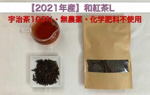 「2021年産」和紅茶Lサイズ 宇治茶100% 無農薬・化学肥料不使用