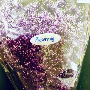 かすみ草 プリザーブドフラワー 大地農園 花材