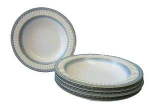 スープ皿 カフェ風 リム シチュー皿 サイネリア 21cm パスタ皿 5個セット カレー皿 小さめ おしゃれ 北欧風 食洗機対応 レンジ可 モダン