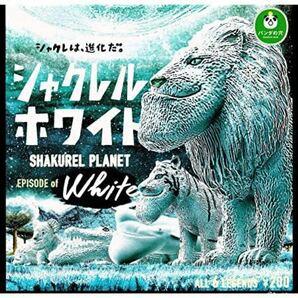 シャクレルプラネット 全6種 ホワイト ガチャガチャ