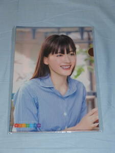 Japan life clear file 6 pieces set ( Ayase Haruka,....,... person, rock pine ., Okabe large,. tree . possible .) new goods ( unused )