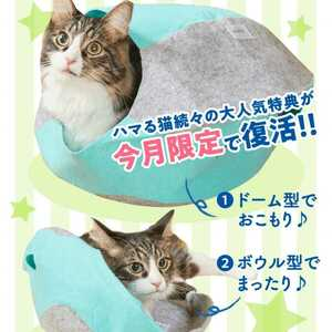 ねこのきもち 付録 特典 3WAY フエルトハウス ネコ 猫 新品未開封 おもちゃ ベッド ハウス