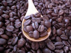 自家焙煎アチャオコーヒー 甘さ5つ星 タンザニア アデラ AA 100g 送料込み!