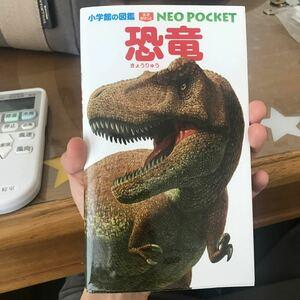 恐竜/冨田幸光
