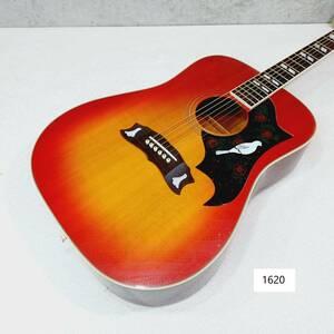 【1620】『現状渡し』Morris モーリス WD-25 アコースティックギター