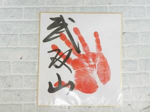 M167【激レア】大相撲 武双山 手形 直筆サイン色紙