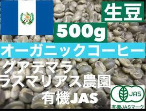 生豆 グアテマラ オーガニック ラスマリアス農園  500g *即購入可
