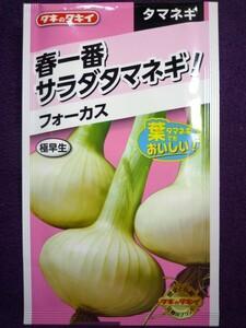 ★種子★ フォーカス タマネギ タキイ種苗 22.04 (ゆうパケット便可能)