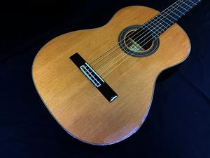 新品・即決・展示品・送料無料・ARIA A-50C セダー単板トップ クラシックギター