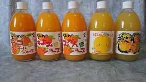 道の駅でも販売!5種味くらべセット愛媛県産果汁100%みかん、きよみ、デコタン(不知火)、甘夏、河内晩柑の5種類計500㎜×24本入り