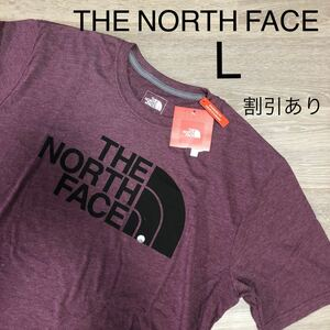 THE NORTH FACE ノースフェイスTシャツ 海外限定 ハーフドーム ビッグロゴ ロゴTシャツ 半袖Tシャツ