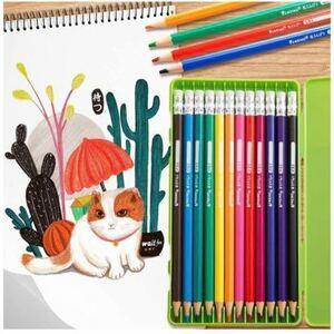 色鉛筆 12色 油性色鉛筆 消せる色えんぴつ 消しゴム付き 画材セット エコいろえんぴつ 名入れ 塗り絵 お絵描き 美術 子供、学生、大人向け