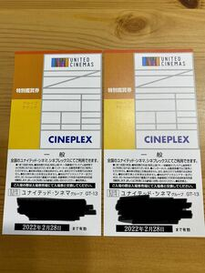 ユナイテッドシネマ 鑑賞券 2枚セット 2022年2月28日まで