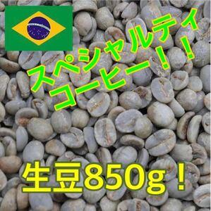 スペシャルティコーヒー!ブラジル セラード農園 生豆850g!