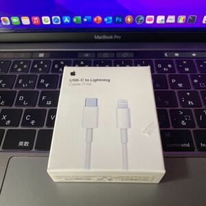 Apple USB-C Lightningケーブル