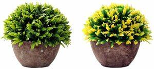 type C Aicvhin 光触媒 造花 人工観葉植物 インテリア 飾り 撮影 2点セット プレゼント ギフト卓上 小型 植木