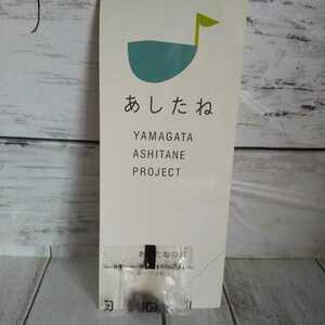 家庭菜園/ガーデニング/アサガオの種/送料84円