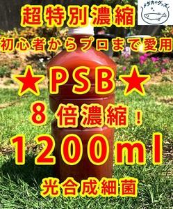 コスパ優秀★PSB 光合成細菌 超8倍濃縮1200ml送料無料★バクテリアメダカめだからんちゅう金魚熱帯魚ミジンコゾウリムシミドリムシおまけ