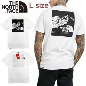 ノースフェイス Tシャツ ボックス 半袖 グラフィック バックロゴ トップス ホワイト Lサイズ NF0A3S3R THE NORTH FACE GRAPHIC TEE 新品