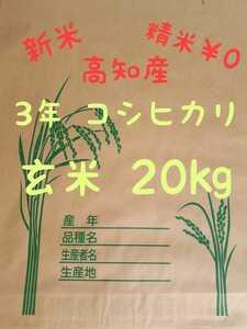 送料込み 令和3年産 高知県産 コシヒカリ玄米20㎏(袋込み)