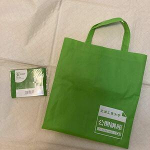 エコバッグ グリーン 2個 セット 折りたたみマイバッグ ポリエステル レジ袋形 レッスンバッグ形 トートバッグ