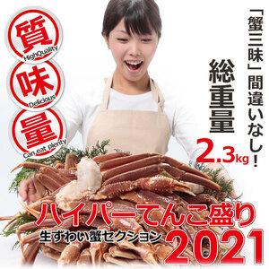 極上品 生 ズワイガニ 約 2.3kg 特大 5L 惚れ惚れ蟹 さんきん1円