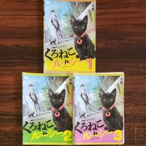 レンタル版DVD くろねこルーシー 全3巻 山本耕史 京野ことみ 塚地武雄