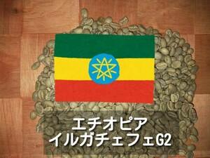 エチオピア イルガチェフェG2 コーヒー生豆 800g