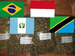 マンデリン ブラジル グァテマラ タンザニア 各200g コーヒー生豆