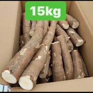 キャッサバ 芋 15kg