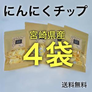 ドライにんにく 15g×4袋 宮崎県産 乾燥にんにくチップ にんにくスライス №10