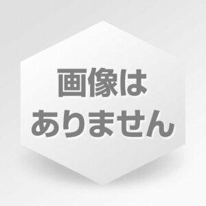 (20日分) 300粒 黒にんにく ybhVa 亜鉛&マカ スーパービール酵母Z アサヒグループ食品