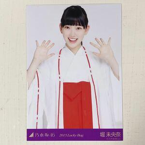 乃木坂46◆堀未央奈◆2015 Lucky Bag 福袋◆生写真◆即決