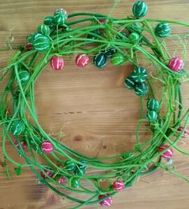 小さなスイカみたいな実【沖縄すずめうりの実 蔓あり】リース・アレンジ等に 緑から赤へ クリスマス 沖縄スズメウリ ドライフラワーに