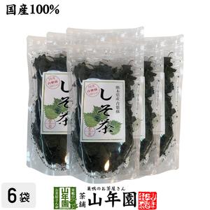 健康茶 国産 100% しそ茶 青しそ茶 30g×6袋セット 無農薬 ノンカフェイン 熊本県産 送料無料 お茶 敬老の日 2021 ギフト プレゼント