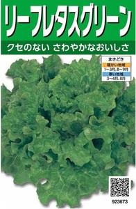 超おいしい!家庭菜園・園芸ガーデニング「リーフレタスの種」一袋 栽培しやすい非売品