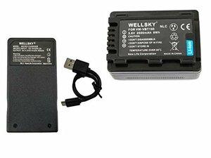 [ 1個 ] USB & 2点セット 急速互換充電器 1個 VW-VBT190-K 超軽量 VW-BC10-K VW-VBT19