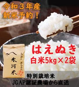 新米予約!!令和3年産 氷河米 はえぬき 白米10kg 山形県 庄内産 送料無料!