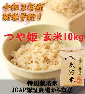 新米予約!!令和3年産 氷河米 つや姫 玄米10kg 山形県 庄内産 送料無料!