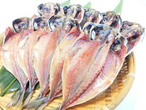 伊豆の名産 アジの干物 たっぷり10枚セット お得用 脂ののった絶品の干物です