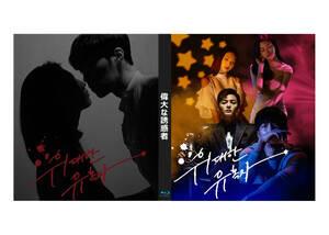 偉大な誘惑者 Blu-ray版 (全話)《日本語字幕あり》 韓国ドラマ