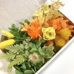 【訳あり 花材セット/ ハーバリウム花材】紫陽花  ローズ 薔薇 シルバーデイジー かすみ草 プリザーブドフラワー 小花詰め合わせ