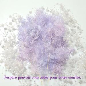 加工花材* ほんのり パープル グラデ プリザーブドフラワー 花材