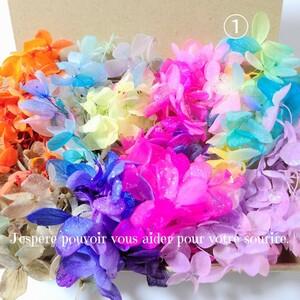 加工花材* ① アジサイ プリザーブドフラワー 花材