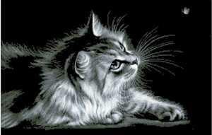 クロスステッチキット black cat モノクロ猫 14CT 54×38cm 刺繍 匿名配送