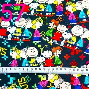 Snoopy  生地⑤  50×140 【在庫①サイズ、1点のみ!】