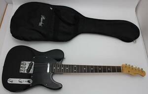 鳴動確認済 Bacchus バッカス BTE-TW NS エレキギター ケース付き